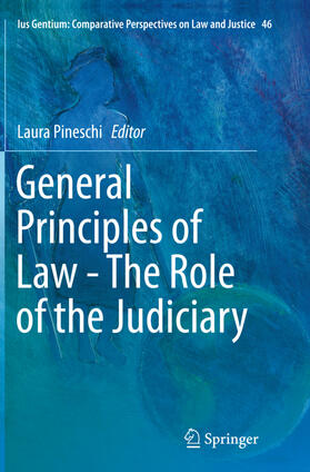 Pineschi | General Principles of Law - The Role of the Judiciary | Buch
