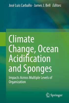 Climate Change, Ocean Acidification and Sponges