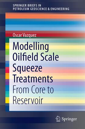 Modelling Oilfield Scale Squeeze Treatments