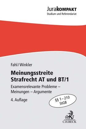 Meinungsstreite Strafrecht AT und BT/1