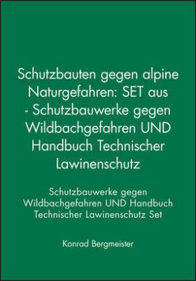 Schutzbauten gegen alpine Naturgefahren
