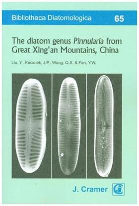 The diatom genus Pinnularia from Great Xing'an Mountains, China