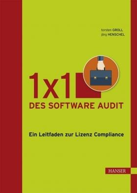 1x1 des Software Audit