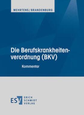 Die Berufskrankheitenverordnung (BKV)