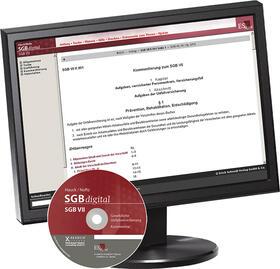 Sozialgesetzbuch (SGB) VII: Gesetzliche Unfallversicherung - im Abonnementbezug