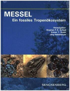 MESSEL - Ein fossiles Tropenökosystem