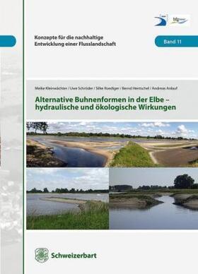 Alternative Buhnenformen in der Elbe - hydraulische und ökologische Wirkungen