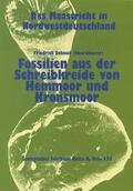 Die Maastricht-Stufe in NW-Deutschland, Teil 11