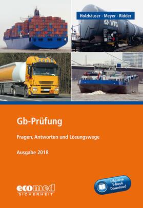 Holzhäuser/Ridder/Meyer | Gb-Prüfung inklusive E-Book | Buch