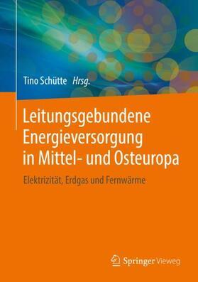 Leitungsgebundene Energieversorgung in Mittel- und Osteuropa