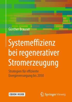 Systemeffizienz bei regenerativer Stromerzeugung