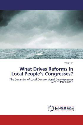 Sun | What Drives Reforms in Local People's Congresses? | Buch