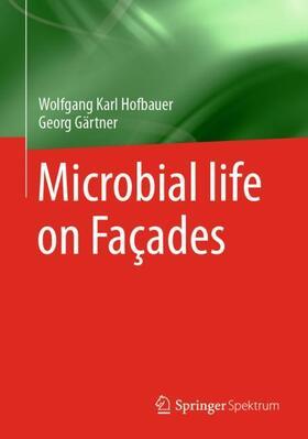 Mikroorganismen an Fassaden