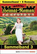 Heimat-Roman Treueband 3 - Sammelband
