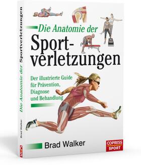 Die Anatomie der Sportverletzungen