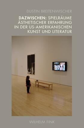 Dazwischen: Spielräume ästhetischer Erfahrung in der US-amerikanischen Kunst und Literatur