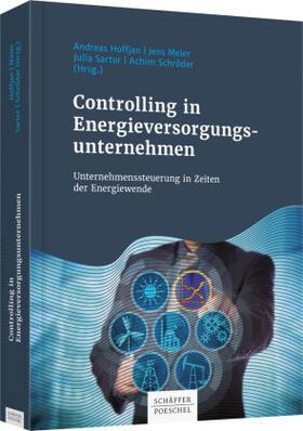 Controlling in Energieversorgungsunternehmen