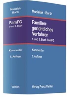 Musielak | Familiengerichtliches Verfahren | Buch
