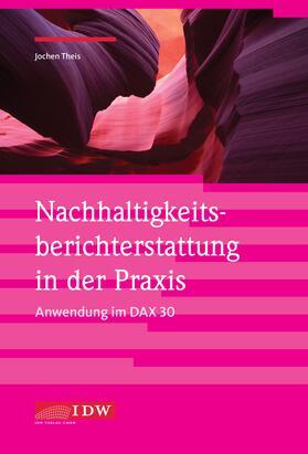 Theis | Nachhaltigkeitsberichterstattung in der Praxis - Anwendung im DAX 30 | Buch