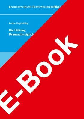 Die Stiftung Braunschweigischer Kulturbesitz