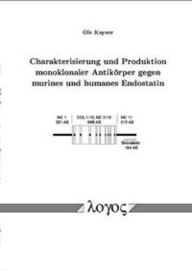 Charakterisierung und Produktion monoklonaler Antikörper gegen murines und humanes Endostatin