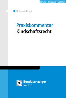 Heilmann | Praxiskommentar Kindschaftsrecht | Buch