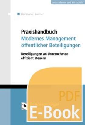Praxishandbuch Modernes Management öffentlicher Beteiligungen (E-Book)