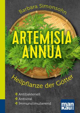 Artemisia annua - Heilpflanze der Götter