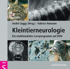 Kleintierneurologie