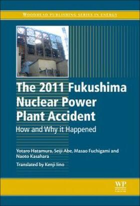 Hatamura / Abe / Fuchigami | The 2011 Fukushima Nuclear Power Plant Accident | Buch | sack.de