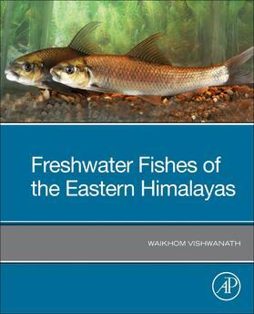 Vishwanath | Vishwanath - Freshwater Fishes of the Eastern Himalayas | Buch | sack.de