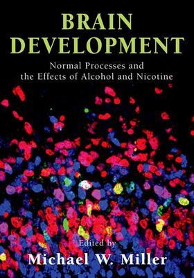 Miller | Brain Development | Buch | sack.de