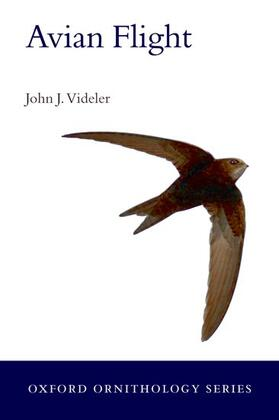 Videler   Avian Flight   Buch   sack.de