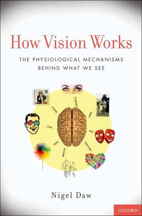 Daw   How Vision Works   Buch   sack.de