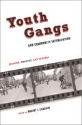 Chaskin |  Youth Gangs and Community Intervention | Buch |  Sack Fachmedien