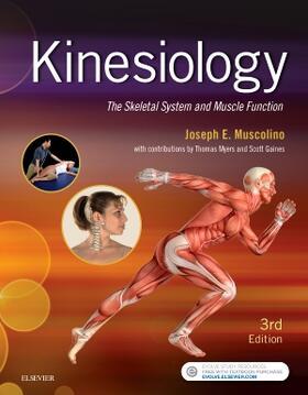Muscolino | Kinesiology | Buch | sack.de