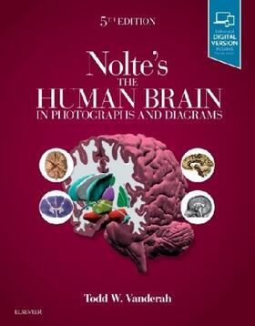 Vanderah | Nolte's The Human Brain in Photographs and Diagrams | Buch | sack.de
