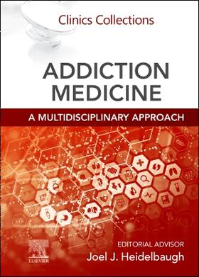 Heidelbaugh | Addiction Medicine: A Multidisciplinary Approach | Buch | sack.de