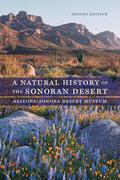 Arizona-Sonora Desert Museum / Phillips / Comus |  A Natural History of the Sonoran Desert | Buch |  Sack Fachmedien