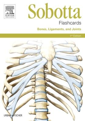 Bräuer | Sobotta Flashcards Bones, Ligaments and Joints | Buch | sack.de