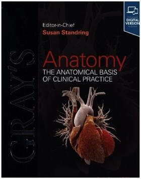 Gray's Anatomy | Buch | sack.de
