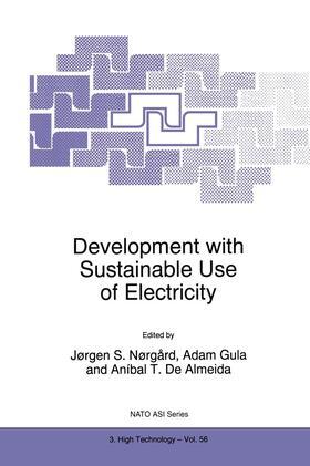 Nørgård / Gula / de Almeida | Development with Sustainable Use of Electricity | Buch | sack.de