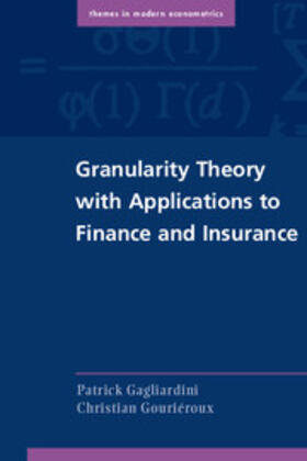 Gagliardini / Gouriéroux | Granularity Theory with Applications to Finance and Insurance | Buch | sack.de