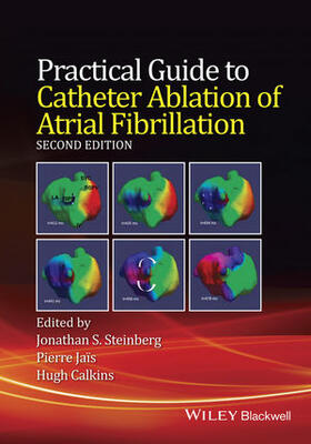 Steinberg / Jais / Calkins | Practical Guide to Catheter Ablation of Atrial Fibrillation | Buch | sack.de
