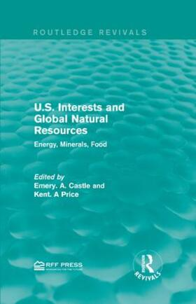 Castle / Price | U.S. Interests and Global Natural Resources | Buch | sack.de