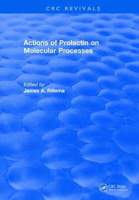 Rillema | Actions of Prolactin On Molecular Processes | Buch | sack.de