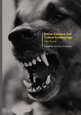 Amatrudo | Social Censure and Critical Criminology | Buch | sack.de