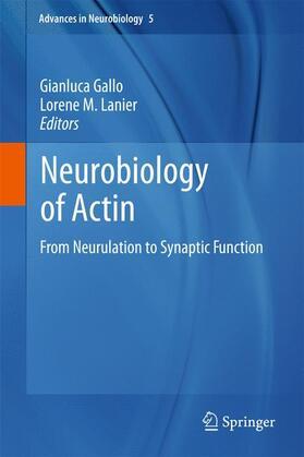 Gallo / Lanier | Neurobiology of Actin | Buch | sack.de