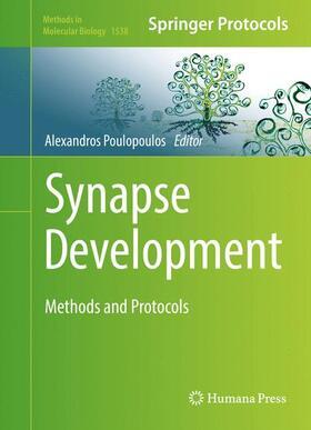 Poulopoulos   Synapse Development   Buch   sack.de