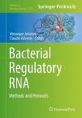 Arluison / Valverde |  Bacterial Regulatory RNA | Buch |  Sack Fachmedien